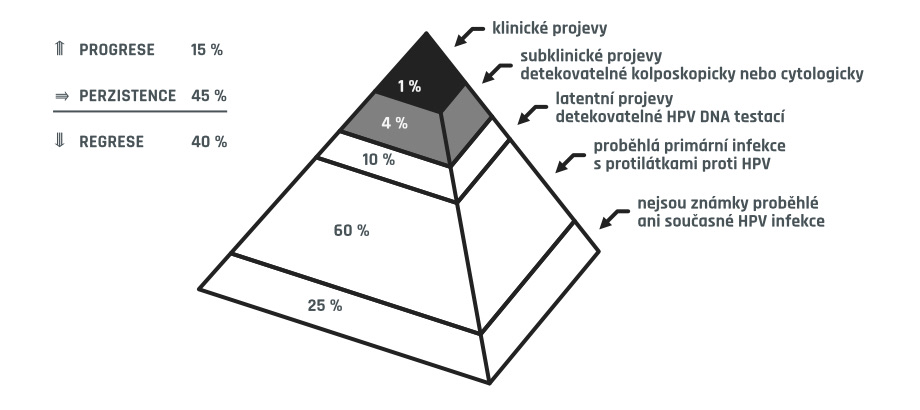 projevy HPV infekce